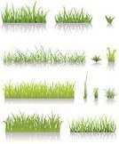 Grass,Grass Area,Weeding,Weed,Ground,Blade of Grass,Gardening,Vector,Front or Back Yard,Seed,Lawn,Turf,Agriculture,Green Color,Growth,Meadow,Land,Lush Foliage,Plant,Leaf,Seedling,Cultivated,Ilustration,Environmental Conservation,Herbal Medicine,Springtime,No People,Germinating,Field,Wide,Herb,Environment,Summer,Plants,Pattern,Set,Backgrounds,Sapling,Nature,Nature,Botany,Rural Scene,Nature Backgrounds,Non-Urban Scene,Gardens,Banner