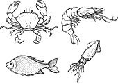 Fish,Prepared Fish,Shrimp,Sketch,Seafood,Doodle,Drawing - Art Product,Scribble,Black And White,Crab,Vector,Food,Squid,Sea,Ilustration,Animals And Pets,Raw Food,Food And Drink,Sea Life,Animal,Prawn,Water,hand drawn