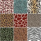 Leopard,Pattern,Seamless,Snake,Animal,Tropical Rainforest,Zebra,Tiger,Print,Jaguar,Vector,Zoo,Textured,Animal Skin,Paw,Cheetah,Striped,Construction Frame,Wallpaper Pattern,Safari Animals,Giraffe,Undomesticated Cat,Design,Africa,Leather,Black Leopard,Backgrounds,Fabric Swatch,Abstract,Fashion,Fur,Fur,Macro,Animal Hair,Animals In The Wild,Hide,Textile,Layered,Animal Backgrounds,Wrapping Paper,Clip Art,Repetition,Elegance,Ilustration,Multi Colored,Animals And Pets,Vector Backgrounds,Carnivore,Decoration,Nature,Beauty And Health,Wildlife,Illustrations And Vector Art,Material,Fashion
