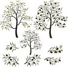 Olive Tree,Tree,Olive,Pattern,Mediterranean Countries,Leaf,Italy,Greece,Spain,Greek Culture,Mediterranean Culture,Color Image,Cooking Oil,Growth,Vector,Vegetable,Gardening,Decoration,Black Color,Food,Fruit,Design Element,Ornate,Design,Food And Drink,Branch,Isolated,Season,Autumn,Plant,Healthy Lifestyle,Cooking,Organic,Harvesting,Vegetarian Food,Summer,Lush Foliage,Stem,Fruits And Vegetables,Backgrounds,Food And Drink,Healthy Eating,Nature,Dieting,Ingredient,Freshness,Agriculture,Green Color