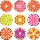 Slice,Fruit,Orange Color,Juice,Citrus Fruit,Lemon,Grapefruit,Colors,Lime,Tangerine,Purple,Circle,Food,Vector,Pink Color,Healthy Eating,Nature,Ilustration,Individuality,Vibrant Color,Single Object,Ripe,Studio Isolated,Fruits And Vegetables,Refreshment,Food And Drink,Isolated,Yellow,Isolated Objects,Isolated-Background Objects,Green Color,Red,Multi Colored,White,Freshness