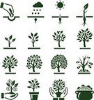 Tree,Symbol,Growth,Computer Icon,Currency,Money Tree,Seed,Money Doesn't Grow On Trees,Human Hand,Cultivated,Icon Set,Planting,Root,Coin,Vector,Origins,Business,Finance,Leaf,Dollar Sign,Dollar,Banking,Currency Symbol,Green Color,Environmental Conservation,Dirt,Branch,Sun,Autumn,Springtime,Ilustration,Sunlight,Ideas,Cloudscape,Cloud - Sky,Drop,Budget,Home Finances,Grass,Digitally Generated Image,Concepts,New Life,Rain,Season,Set,Treasure,Lush Foliage,One Dollar Bill,Group of Objects,Collection,US Paper Currency,Leaves Falling,fertile soil,Winter,Root Hair,Root Tip,Storm