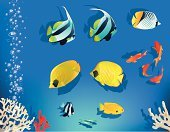 Fish Tank,Aquarium,Coral,Exoticism,Individuality,Tropical Climate,Butterflyfish,Floating On Water,Nature Backgrounds,Nature,Fish,Bannerfish,Sea,Illustrations And Vector Art,Sea Life,Vector Backgrounds,Animals And Pets,Set,Water,Decoration,Bubble