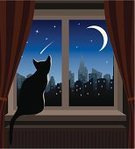 Window,Domestic Cat,Night,Curtain,Home Interior,Silhouette,Window Sill,Living Room,Looking,Outdoors,Sitting,Star Trail,Animal,Watching,Indoors,Urban Scene,Loneliness,Solitude,Concepts And Ideas,Star - Space,Wishing,Looking Through Window,Moon,Pets,Depression - Sadness,Animals And Pets,Pensive,Cityscape,Feline,quite,Cats,City,Radiator,Homes,Emotional Stress,Tranquil Scene,Disappointment,Skyscraper,Sign,Sadness,One Animal,Feelings And Emotions,Sky,Architecture And Buildings