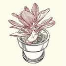 Succulent Plant,Flower Pot,Letterpress,Plant,Old-fashioned,Retro Revival,Ilustration,Isolated,No People,Line Art,Woodcut,Pen And Ink,Vector,Nature,1940-1980 Retro-Styled Imagery,Vector Florals,Square,Design,Illustrations And Vector Art,Plants,Flower Head,Blue,White,Red,Ornate