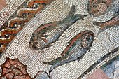 Ancient Rome,Ancient,The Past,Mosaic,Pisces,Italy,Astrology Sign,Concepts And Ideas,Religion,Treviso,Watercolor Painting,Zodiac Water Sign,No People,Fortune Telling