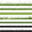 Grass,Silhouette,Easter,Heading the Ball,Set,Daisy,Flower,Banner,Placard,Single Flower,Floral Pattern,Meadow,Putting Green,Summer,Collection,Green Color,Season,Nature,Landscape,Spring,Landscaped,Ilustration,Nature Backgrounds,Springtime,Environmental Conservation,Nature,Nature Symbols/Metaphors,Herb