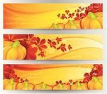 Autumn,Falling,Frame,Pumpkin,Banner,Harvesting,Thanksgiving,Leaf,Green Color,Plant,National Holiday,Scroll Shape,Orange Color,Growth,Holidays And Celebrations,Nature Symbols/Metaphors,Elegance,Yellow,Red,Abstract,Cultures,Season,Food,Nature,Beauty In Nature,Swirl,Fall,Organic,Ornate,Gourd