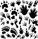 Footprint,Monster,Paw Print,Animal Foot,Animal,Track,Silhouette,Hoof,Paw,Alien,Animals And Pets,Illustrations And Vector Art,Horror,Collection,Bizarre,Imagination,Demon,Design Element,Black Color,Fantasy,Vector,Outline,Genetic Mutation,Halloween,Ilustration,Set