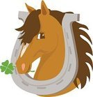 Horse,Cartoon,Show Jumping,Clover,Shoe,Dressage,St. Patrick's Day,Cheerful,Luck,Ilustration,Sign,Four Leaf Clover,Happiness,Smiling,Vector,Livestock,Pets,Brown,Middle Eastern Ethnicity,Mane,vector illustration,Arabia,four leaf,Character Traits,Purebred Dog,Breeze,Concepts And Ideas,Clover Leaf Shape,one two three four,Domestic Animals,show horse,Animal,Positive Emotion,Irish Culture,Looking
