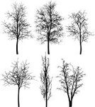 Branch,Winter,Forest,Tree,Back Lit,Pattern,Silhouette,Black And White,Black Color,Drawing - Art Product,Vector,Dry,Dried Plant,Drawing - Activity,Grunge,Pencil Drawing,Backgrounds,Collection,Abstract,Design,Ilustration,White,Textured,Remote,Woodland,Plant,Wood - Material,Nature,Isolated,Textured Effect,Illustrations And Vector Art,Outdoors,Season,Shape,Single Object