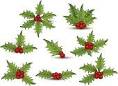 Holly,Leaf,Christmas Ornament,Christmas,Berry,Holiday,Christmas Decoration,Plant,Winter,Collection,Season,Celebration,Holidays And Celebrations,Set,Christmas,Arts And Entertainment,December,Design Element,Decoration