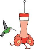 Hummingbird,Feeding,Retirement,Animal,Bird,Relaxation,Hobbies,Care,Growth,Flying,Nature,Leisure Activity,Nature,Gardens,Animals And Pets,Recreational Pursuit,Outdoors