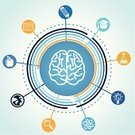 Human Brain,Infographic,Circle,Education,Science,Learning,People,Apple - Fruit,Brainstorming,Wisdom,Imagination,Symbol,Intelligence,University,Creativity,Success,Pencil,Illustrations And Vector Art,Sign,Industry,Ideas,Concepts,Vector Icons,Education,Chemistry,Ilustration,Vector