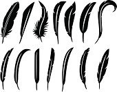 Feather,Quill Pen,Silhouette,Black Color,Collection,Set,Animal