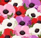 Flower,Plant,Purple,White,Backgrounds,Red,Petal,Pink Color,Repetition,Flower Head,Design Element,Wallpaper Pattern,Poppy,Beige,Pattern,Green Color,Ilustration,Leaf,Design,Seamless,Maroon,Nature,Beautiful,Blossom,Textured,Vector,White Background,Ornate