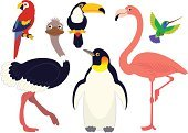 Flamingo,Cute,Parrot,Penguin,Hummingbird,Bird,Ostrich,Nature,Small,Wildlife,Animals In The Wild,Set,Animal,Fun,Group Of Animals,Forest Animals,Isolated On White,Animal Themes,Series,Ilustration,Cartoon