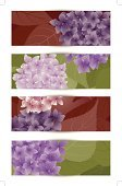Hydrangea,Ilustration,Placard,Banner,Flower,Purple,Pink Color,Elegance,Backgrounds,Brown,Creativity,Summer,Design,Muticolor,Season,Computer Graphic,Leaf,Digitally Generated Image,Beauty In Nature,Plant,Nature,Springtime,Decoration,Decor,Green Color,Beautiful,Blossom,Painted Image,Environmental Conservation,Vector,Greeting Card