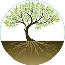 Tree,Root,Symbol,Growth,Computer Graphic,Leaf,Environmental Conservation,Cultivated,Green Color,Vector,Ilustration,Circle,Dirt,Plant,Sign,Nature,Environment,Branch