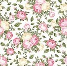 Rose - Flower,Flower,Backgrounds,Pattern,Seamless,Pink Color,Old-fashioned,Textured,Bouquet,Victorian Style,White,Textile,Ilustration,Beige,Green Color,White Background,Flower Head,Design,Blossom,Branch,Vector,Repetition,Ornate,Leaf,Style,Decoration,Design Element,Beautiful,Nature,Petal,Bud,Plant
