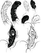 Feather,Feather,Peacock,Silhouette,Bird,Tattoo,Animal Hair,Black And White,Outline,Pencil Drawing,Vector,D.J. White,Sketch,Ilustration,Concepts,Black Color,Drawing - Activity,Line Art,tattoo style,Luxury,Computer Graphic,Creativity,Design Element,Isolated,Allegory Painting,Posing,Fantasy,Art,template,Smooth