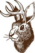 Jackalope,Rabbit - Animal,Antler,Drawing - Art Product,hand drawn,Animal,Cartoon,Sketch