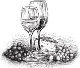 Wine,Cheese,Sketch,Glass,Grape,Drawing - Art Product,Alcohol,Drink,Still Life,Wineglass,Isolated On White,Berry Fruit,Transparent,Winemaking,Bunch,Doodle