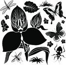 Orchid,Symbol,Icon Set,Africa,Computer Icon,Leaf,Nature,Butterfly - Insect,Black And White,Design Element,Set,Clip Art,Tropical Climate,Tropical Rainforest,Fly,Ilustration,Rainforest,Insect,Assassin Bug,Disa Orchid,Single Flower,Vector,Dragonfly,Cartoon,No People,Black Color