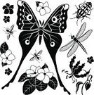 Silhouette,Dragonfly,Black And White,Butterfly - Insect,Stencil,Flame Lily,Vector,Single Flower,African Descent,No People,Group Of Animals,Icon Set,Beetle,Tropical Rainforest,Design Element,Insect,Ilustration,Africa,Rainforest,Moth,Lily,Computer Icon,Cartoon,African Violet,Clip Art,Black Color,Tropical Climate,Symbol,Fly,Flower,Nature,Set