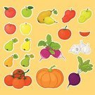 Vegetable,Vector,Garlic,Root,Plant,Fruit,Vegetable Garden,Nature,Orange Color,Agriculture,Leaf,Apple - Fruit,Farm,Set,Still Life,Food And Drink,Green Color,Pear,Food,Common Beet,Dinner,Tomato,Refreshment,Healthy Eating,Pumpkin,Gourd,Organic,Crop,Radish,Dessert,Freshness,Computer Icon,Eating,Raw Food,Autumn,Vegan Food,Pepper - Vegetable,Isolated,Dieting,Vegetarian Food,Sweet Food,Beet,Halloween,Single Object,Vitamin Pill