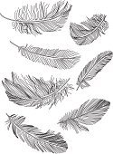 Feather,Quill Pen,Drawing - Activity,Wing,Black Color,Silhouette,Symbol,Pen,White,Vector,Single Object,Fluffy,Ilustration,Lightweight,isolated objects,Isolated On White,Outline,Vector Ornaments,Set,Isolated-Background Objects,Illustrations And Vector Art,Sign,Bird,Writing,Flying,Art