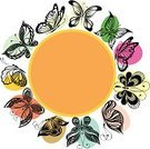Silhouette,Butterfly - Insect,Decoration,Springtime,Design,Set,Insect,Nature,Vector,Collection,Ornate,Tattoo