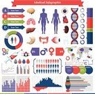 Infographic,Healthcare And Medicine,Medical Exam,Symbol,The Human Body,Healthy Lifestyle,Computer Icon,Anatomy,Human Internal Organ,People,Human Heart,Body,Vector,Human Digestive System,Medicine,Human Brain,Colon,Human Intestine,Human Blood Vessel,Human Lung,Liver,Cardiovascular System,Herbal Medicine,Arrow Symbol,Human Pancreas,Respiratory System,Ilustration,Stomach,Diagram,Human Small Intestine,Human Abdomen,Spleen,Pie Chart,Bar Graph,Inhaling,Red,Brain Stem,Simplicity,Expertise,Health Symbols,Health Backgrounds,Ideas,Human Trachea,Valve,Shiny,Graph,Isolated On White,Wisdom,Isolated,Human Tissue