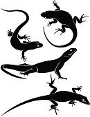 Lizard,Reptile,Newt,Silhouette,Salamander,Computer Icon,Gecko,Animal,Zoo,Dragon,Climbing,Clambering,Nature,Animal Scale,Black Color,Zoology,Remote,Crawling