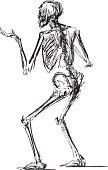 Chalk Outline,People,Drawing - Art Product,Halloween,Isolated On White,The Human Body,Horror,Anatomy,Sketch,Doodle,Human Skeleton