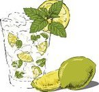 Rum,Cold - Termperature,Food,Frozen Drink,Gin,Herb,Citrus Fruit,Mojito,Food And Drink,Alcohol,Vector,Ice,Mint Leaf - Culinary,Vodka,Illustrations And Vector Art,Ice Cube,Clip Art,Glass,Ilustration,Cold Drink,Sketch,Drinking Water,Lime,Green Color,White,Yellow,Lime Green,Freshness,Glass - Material,Close-up,Drink,Alcohol,Cocktail,Drawing - Art Product,Fruit,Isolated On White