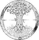 Tree,Celtic Culture,Circle,Root,Mandala,Symbol,Vector,Four Seasons,Life,Yggdrasil,Balance,Branch,Nature,Digitally Generated Image,Graffiti,Cultures,Tree Trunk,White,Ilustration,Doodle,Black Color