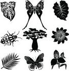 Palm Leaf,Computer Icon,Symbol,Black And White,Nature,Baobab Tree,Butterfly - Insect,Plant,Rainforest,Insect,Tropical Rainforest,Tropical Butterfly,Cartoon,Rainbow Beetle,Icon Set,Ilustration,Vector,Single Flower,Leaf,Animal,Clip Art,Set,Orchid,Beetle,Flower,Tropical Climate,Africa,Tropical Flower,Black Color
