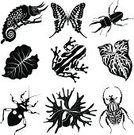 Frog,Chameleon,Tropical Climate,Icon Set,Symbol,Africa,Computer Icon,Beetle,Rainforest,Insect,Tropical Rainforest,Goliath Beetle,Cartoon,Black Color,Tropical Butterfly,Ilustration,Vector,Single Flower,Tropical Flower,Butterfly - Insect,Animal,Clip Art,Set,Plant,Fern,Black And White,Leaf,Flower,Nature