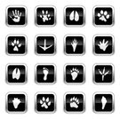 Silhouette,Animal Track,Paw Print,Icon Set,Vector,Ilustration,Footprint,Claw Mark,Track,Animal Themes,Glowing,Symbol,Color Gradient,Interface Icons,Circus,Computer Icon,Zoo