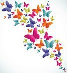 Butterfly - Insect,Multi Colored,Springtime,Ilustration,Vibrant Color,Vector