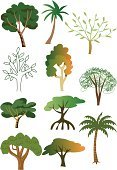 Mangrove Tree,Tree,Cartoon,Palm Tree,Rainforest,Forest,Amazon Rainforest,Vector,Oak Tree,Tree Trunk,Posing,Ilustration,Plant,Leaf,Art,Wood - Material,Formal Garden,Bark,Woodland,Green Color,Agriculture,Cultivated,Timber,Botany,Environment,Growth,Nature,Environmental Conservation,Art Product