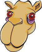 Camel,Animal Head,African Ethnicity,Looking,Humor,Illustration Technique,Vector,Hump,Human Face,Snout,Drawing - Art Product,Personaje,Symbol,Desert,Animal Nose,Animal,Africa