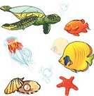 Turtle,Fish,Life,Air,Bubble,Starfish,Underwater,Jellyfish,Oyster