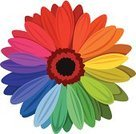 Multi Colored,Gerbera Daisy,Daisy,Rainbow,Flower,Colors,Petal,Spectrum,Springtime,Flower Head,Pink Color,Close-up,Chrysanthemum,Red,Abstract,Vector,Blossom,Ornate,Design,Beautiful,Design Element,Plant,Purple,Maroon,Orange Color,Yellow,White Background,Decoration,Isolated,Single Object,Vibrant Color,Blue,Macro,Ilustration,Style,Nature,Green Color