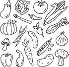 Doodle,Child's Drawing,Corn,Food,Cucumber,Icon Set,Green Bean,Celery,Squash - Vegetable,Raw Potato,Sketch,Vegetable,Symbol,Broccoli,Salad,Black And White,Carrot,Asparagus,Pea Pod,Onion,Tomato,Pepper - Vegetable,Superfood,Lettuce,Root Vegetable,Turnip,Iceberg Lettuce,Pencil Drawing,Vegetarian Food,Eggplant,Edible Mushroom,Jalapeno Pepper,Drawing - Art Product,Radish,Healthy Lifestyle,Corn On The Cob,Bell Pepper,Leaf Vegetable,Chili Pepper,Cabbage,Gourd Family,Pumpkin,Cauliflower,Healthy Eating,Food And Drink,Ilustration,Green Pea