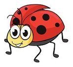Ladybug,Backgrounds,Multi Colored,Red,Computer Graphic,Smiling,Animal,One Animal,Cute,Shiny,Spotted,Fly,Insect,Life,Beetle,Animals In The Wild,Nature,Animal Antenna,Wildlife