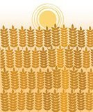 Summer,Harvesting,Crop,Field,Ilustration,Abstract,Rye,Corn On The Cob,Vector,shavuot,Sky,Yellow,Whole Wheat,Ripe,Sun,Food,Harvesting Time,Autumn,Corn - Crop,Nature,Wheat,Agriculture