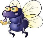 Flying,Irritation,Housefly,Mosquito,Animal,Single Object,Standing,Unpleasant Smell,Clip Art,Purple,White Background,Clipping Path,Proboscis,Bacterium,Isolated,Virus,Insect,Illness,Messy