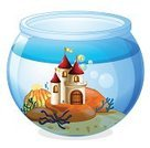 Fish Tank,Computer Graphic,Stone Material,Image,Castle,Broken,Decoration,Backgrounds,Circle,Photograph,Glass - Material,Nobility,Jar,Palace,Mansion,Clip Art,Water,Reef,Liquid,Wet